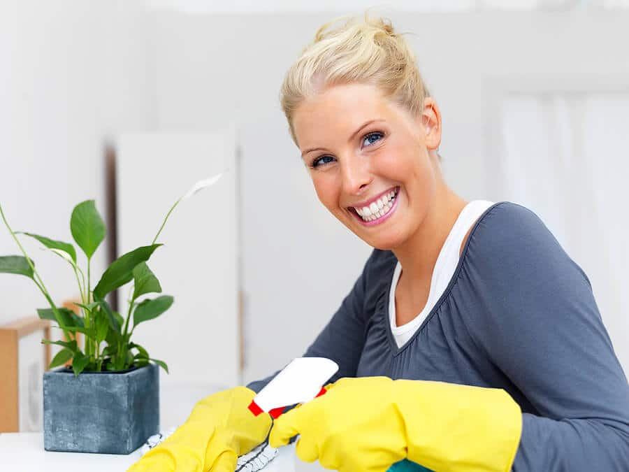 Domestic cleaning by Diamond Home Support