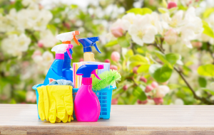 Top Ten Spring Cleaning Tips